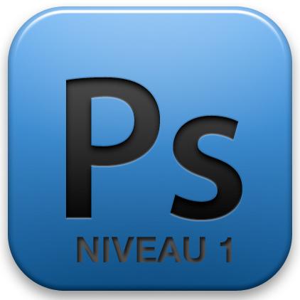 logo-psd-niv1